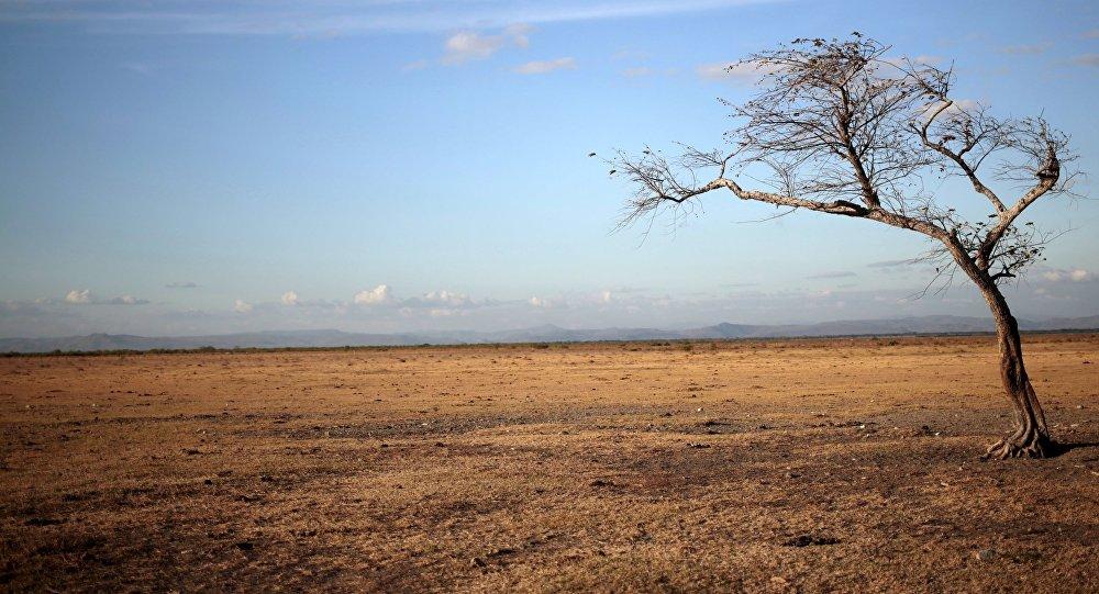 Un campo en Nicaragua