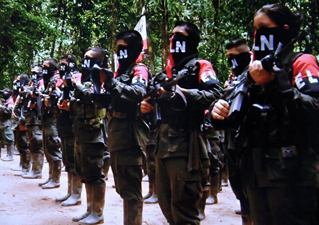 Combatientes del ELN (archivo)