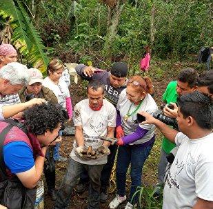 Familiares de desaparecidos encuentran restos humanos en Veracruz, México