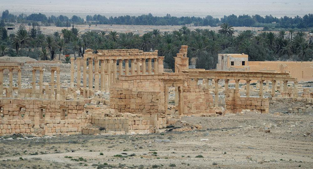 Las tropas sirias, muy cerca de Palmira