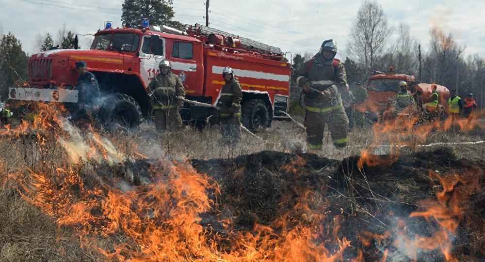 Unos ejercicios para la extinción de incendios forestales
