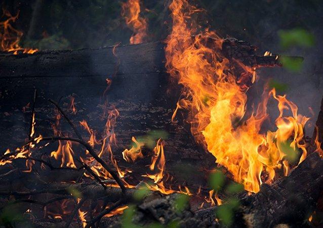 Un incendio (ilustración)
