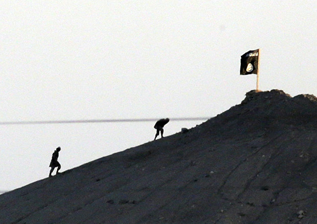 Radicales de Daesh (archivo)