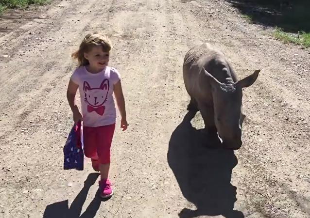 Una niña saca a pasear a una cría de rinoceronte blanco