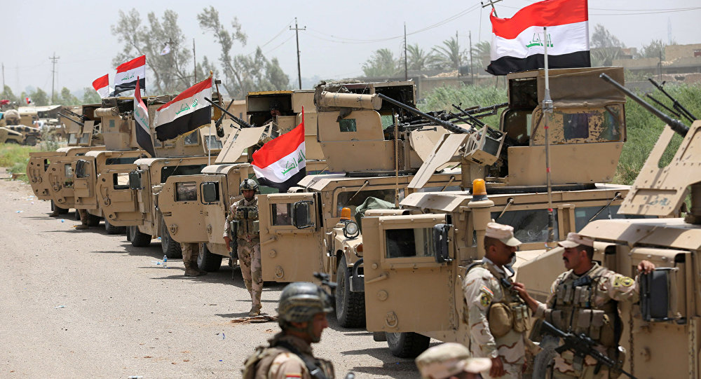 Military vehicles of the Iraqi security forces are seen on the outskirts of Falluja