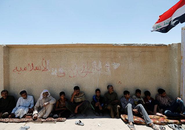 Los iraquíes que huyeron de Faluya