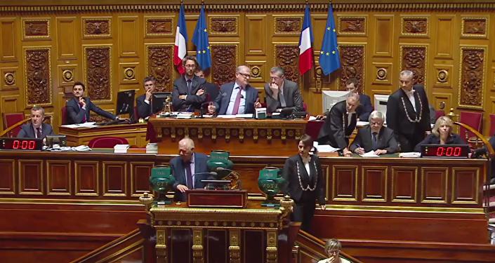 El Senado de Francia aprobó una resolución que exhorta a aliviar las sanciones contra Rusia