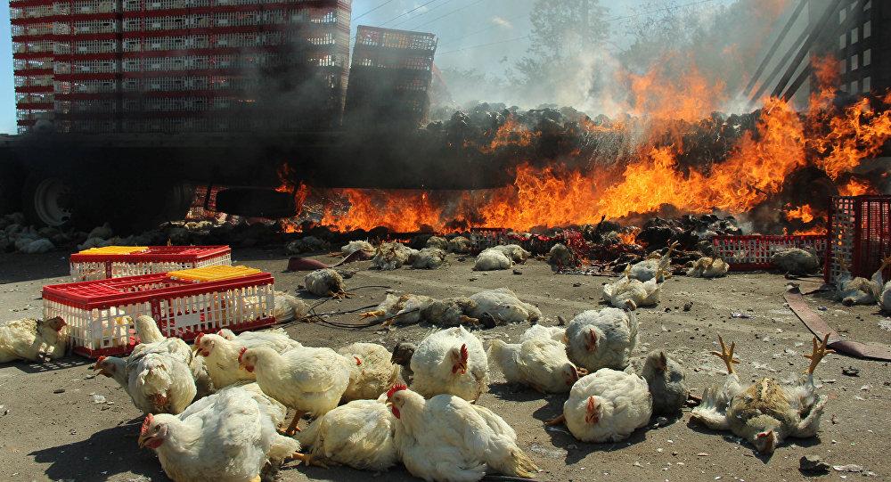 Consecuencias de disturbios en Oaxaca