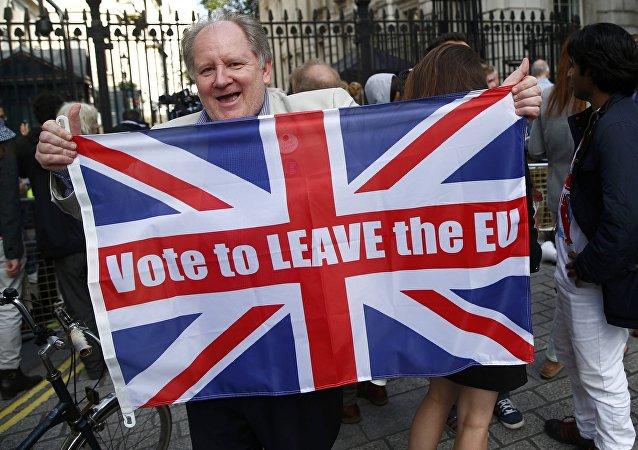 Partidario del Brexit (archivo)