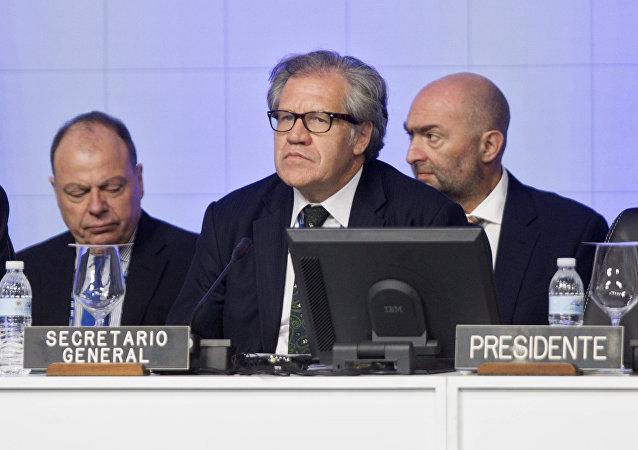 Luis Almagro, secretario general de la OEA (centro)