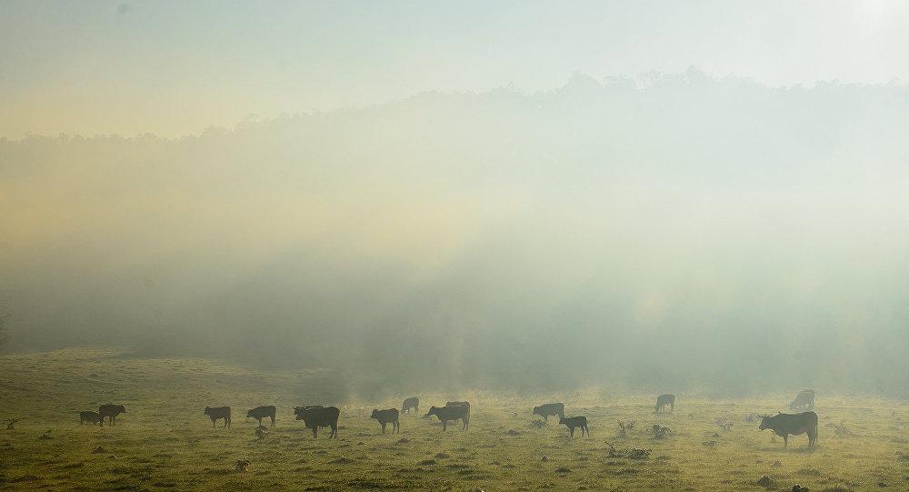 Amanecer con niebla en Valle Hermoso, Argentina