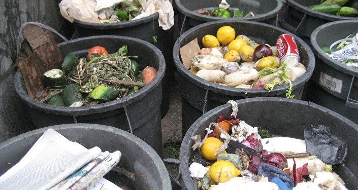 La mitad de la producción alimentaria es tirada a la basura en EEUU