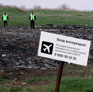 El lugar del siniestro del MH17 Boeing