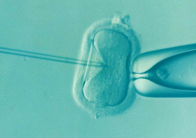 Fecundación in vitro (Archivo)