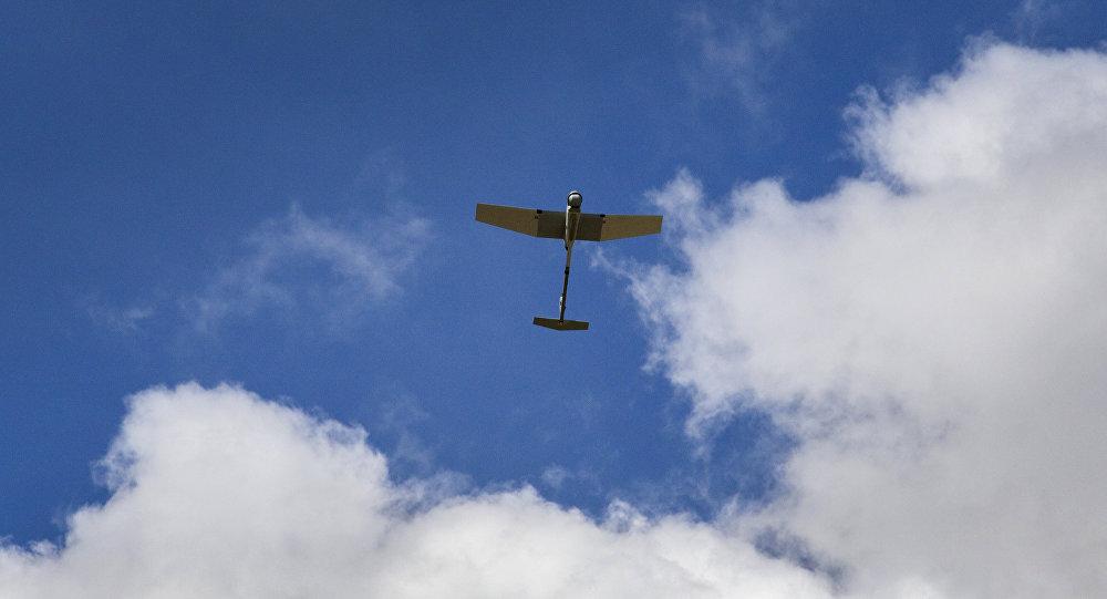 Dron RQ-11B Raven (archivo)