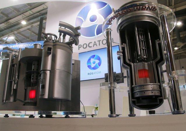 Los modelos de los reactores nucleares modernos de Rosatom en una exhibición en Moscú (archivo)