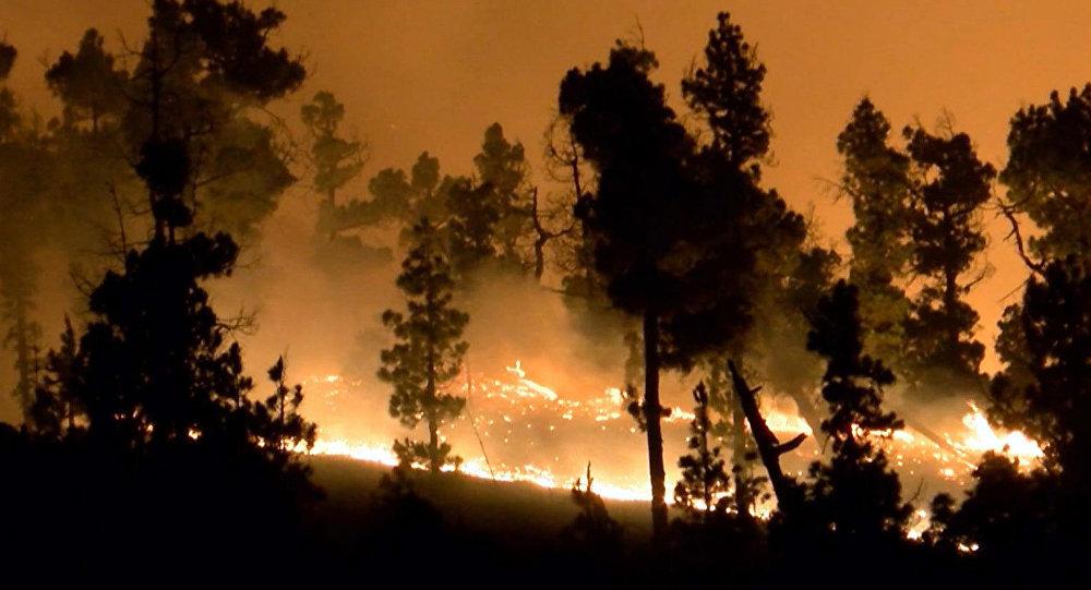 Incendio forestal en España (archivo)