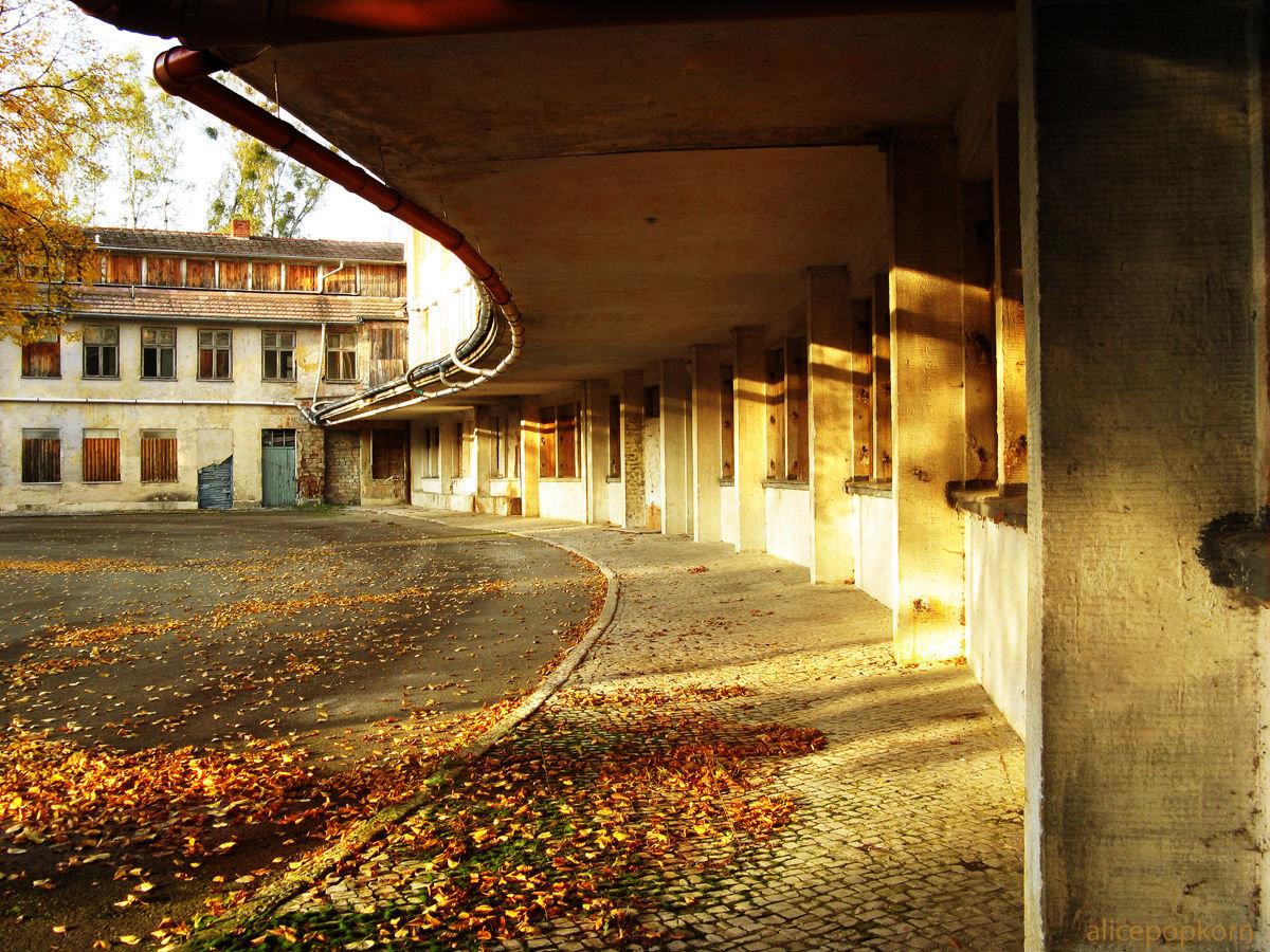 Villa Olímpica abandonada de la ciudad de Berlín. Juegos Olímpicos de verano de 1936.