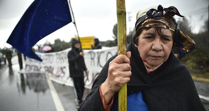 Protesta del pueblo indígena mapuche en Chile (archivo)