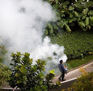 Virus del zika en Singapur