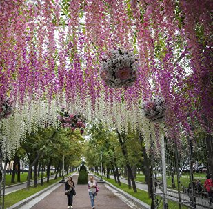 Flores en Moscú