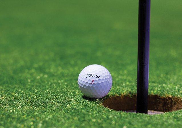 Pelota de golf (imagen referencial)