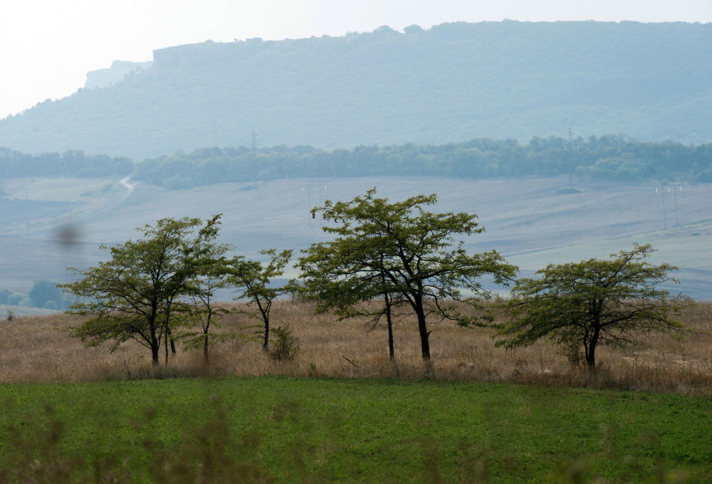 Cercanías del pueblo Konstantínovka del municipio de Simferópol. El centro de la península está cubierto por praderas semiáridas, una continuación de las estepas pónticas.