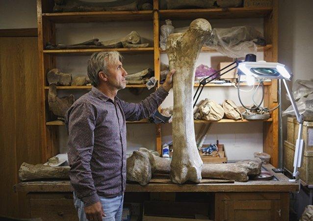 Un hueso de mamut
