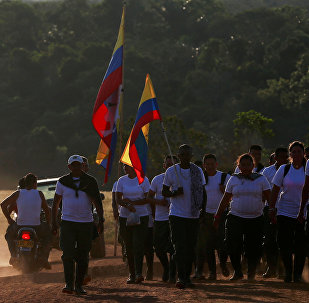 Los combatientes de las FARC