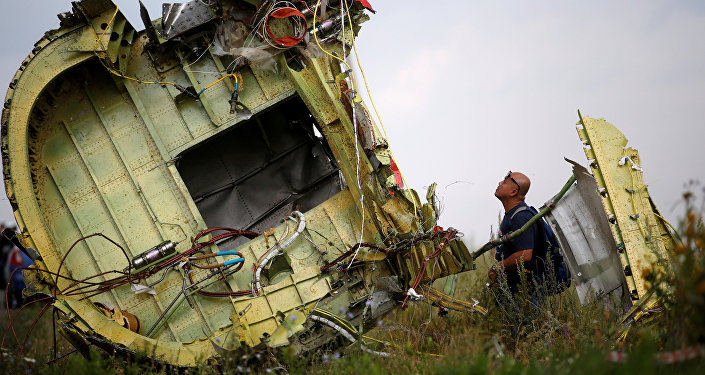 Lugar del siniestro del avión MH17 (archivo)