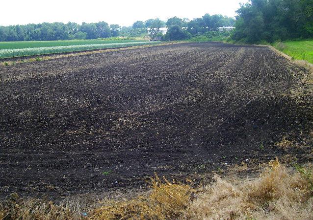 Las tierras negras