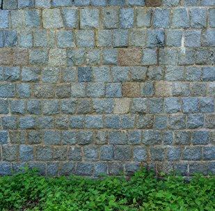 Un muro (imagen referencial)
