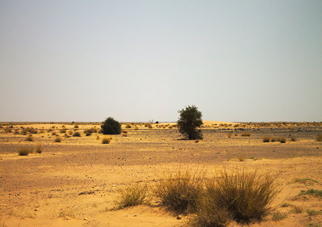La región del Sahel, en África (archivo)