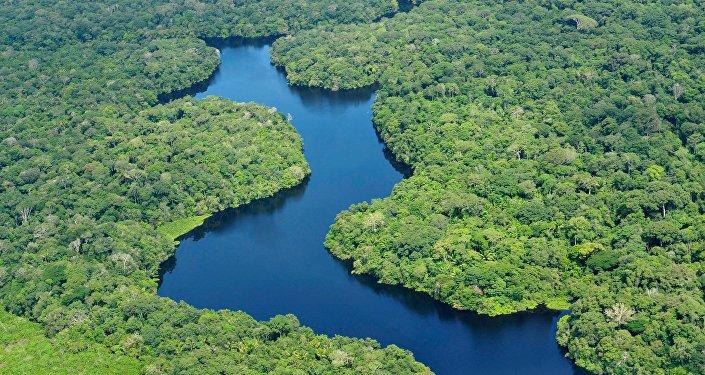 Amazonia (archivo)