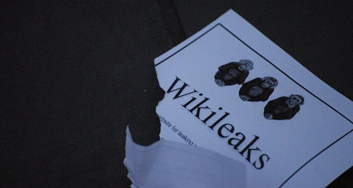 Wikileaks (imagen referencial)