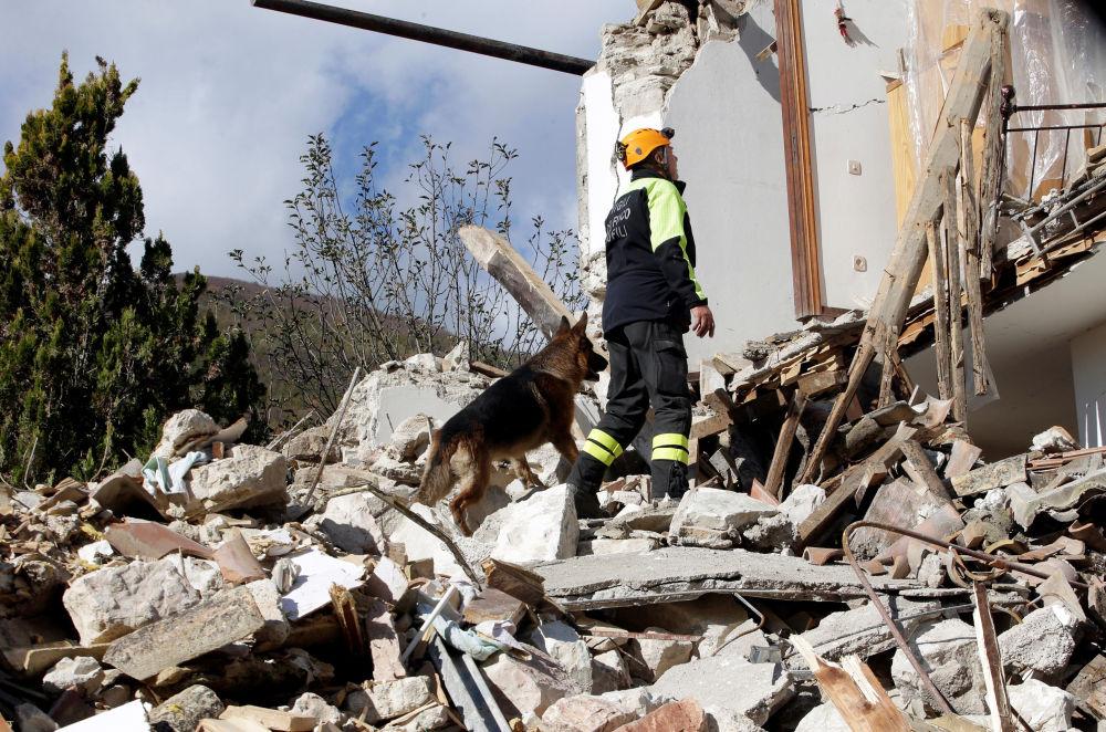 Varios miles de personas se quedaron sin hogar como consecuencia de un fuerte terremoto que se produjo el miércoles por la noche en el centro de Italia