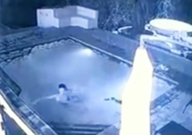 Cocodrilo asesino: reptil ataca a pareja en una piscina