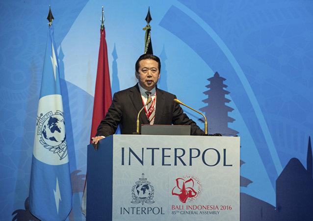 Meng Hongwei, presidente de la Interpol (archivo)