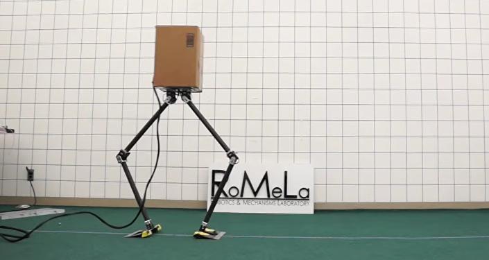 NABiRoS: Non Anthropomorphic Bipedal Robotic System