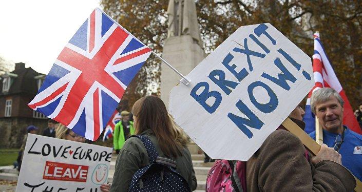 Partidarios del Brexit