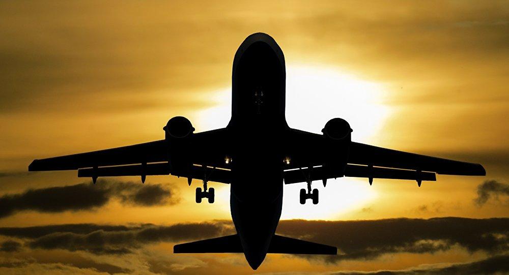 Un avión vuela en el cielo