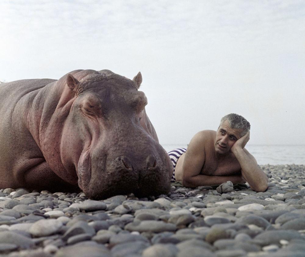 Un domador con un hipopótamo en la costa del mar Negro en 1967
