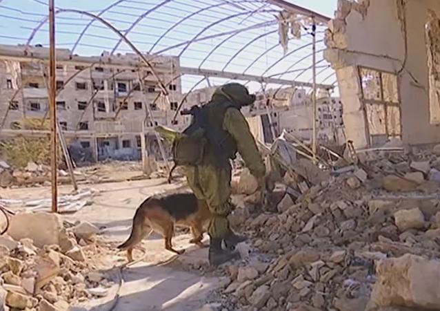 Zapadores rusos en Siria
