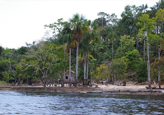 Amazonía en Brasil