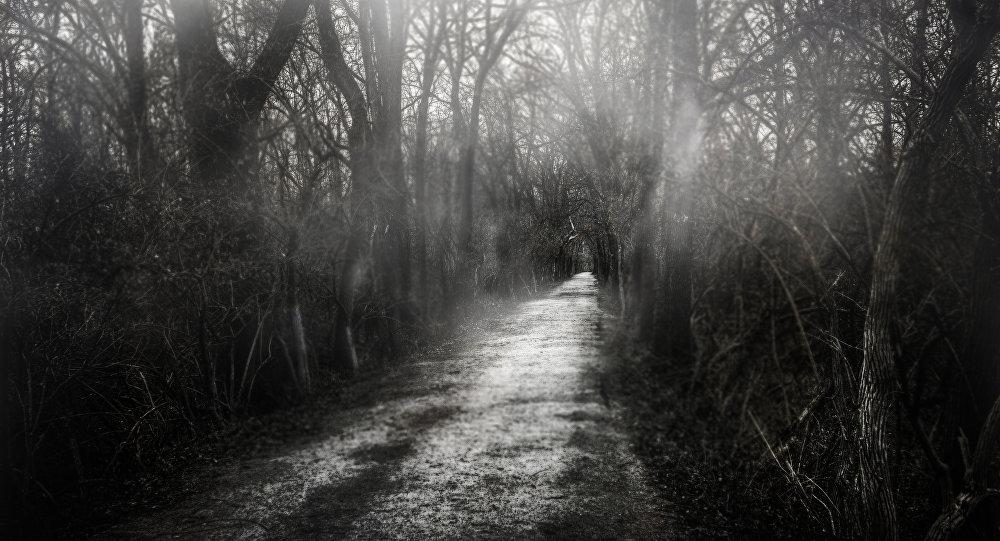 Un bosque escalofriante
