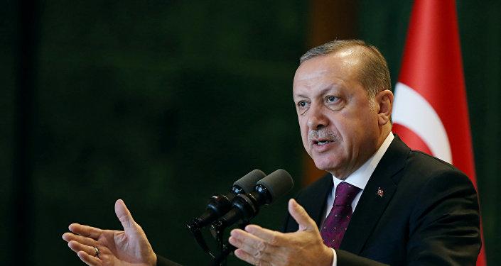 Erdogan compara la política de autoridades alemanas hacia Turquía con el nazismo