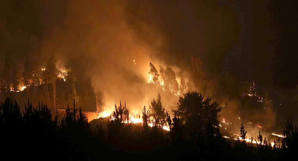 Resultado de imagen para letra en el sur de Chile frente al avance de incendios forestales
