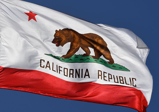 La bandera del estado de California (archivo)