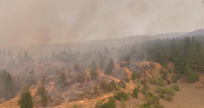 Destrucción causada por incendios forestales en Chile