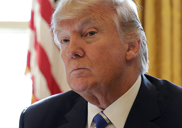 Donald Trump, presidente de EEUU (archivo)